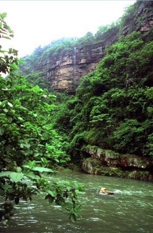 壁纸 大峡谷 风景 300_456 竖版 竖屏 手机